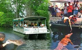 Black River Safari tour fro cruise ship port or hotels