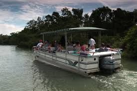 Reserve you Black river Safari tour with us today and get the best price available.