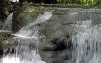 Mayfield Falls Tours